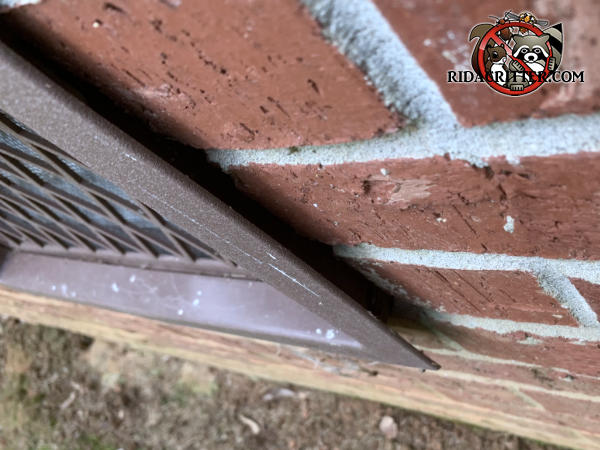 There is a quarter inch gap between the flange of the foundation vent cover and the brick wall that allowed mice to get into a brick house in Locust Grove Georgia