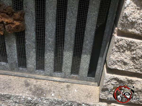Mice gnawed through the screen behind a vertical slat in a metal foundation vent screen to get into a house in Atlanta.