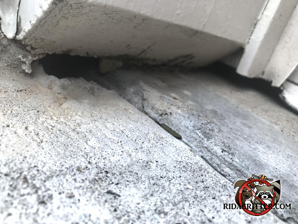 Gap in the concrete under the wooden trim that allowed mice to get into a house in Atlanta