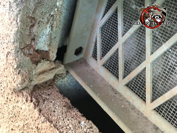 Foundation vent cover slipped into the opening exposing a gap at the bottom that mice used to get into a house in Big Canoe Georgia