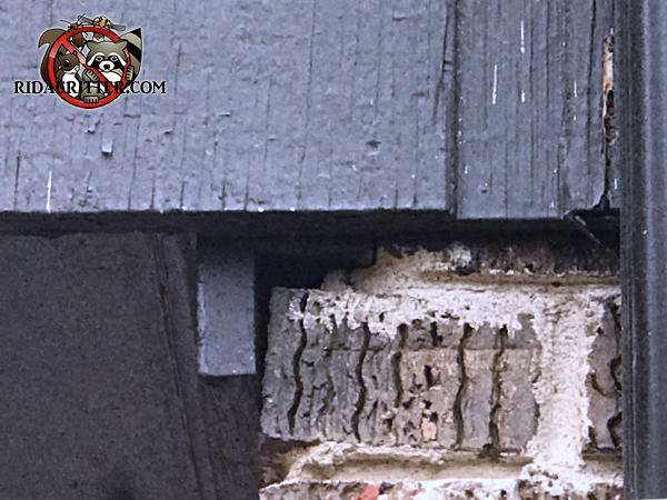 Tiny gap between the brick foundation and the sill plate allowed mice to get into a house in Birmingham Alabama
