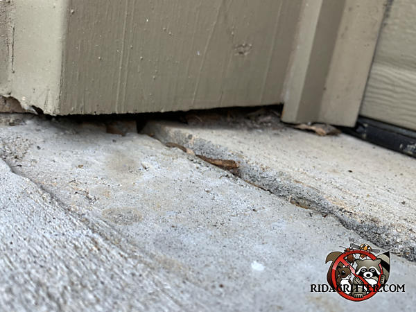 Mice got into a house in Braselton Georgia through a gap between the bottom of the garage door trim and the concrete driveway pavement