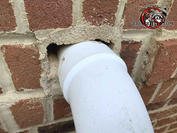 Round PVC pipe going through a brick wall was mortared in a manner that left gaps on the corners that allowed mice into an Albany Georgia home.