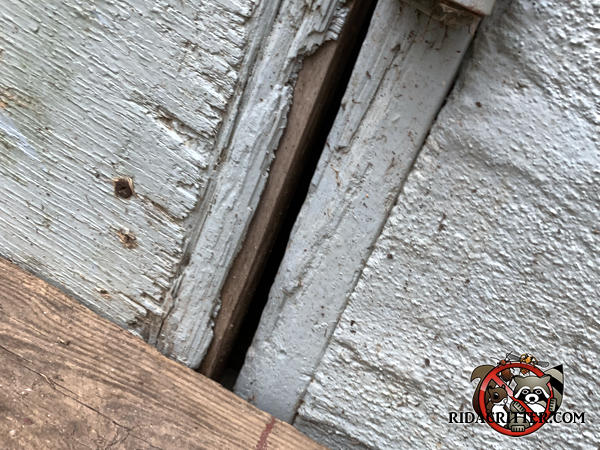 Three eighth inch gap between a rotten wooden crawl space door and its frame needs to be repaired to exclude mice from an Americus Georgia home.