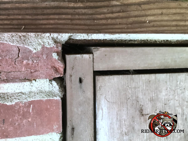 Half inch gap between top of a wooden crawl space door frame and the brick wall has to be sealed to keep mice out of a house in Roswell Georgia.