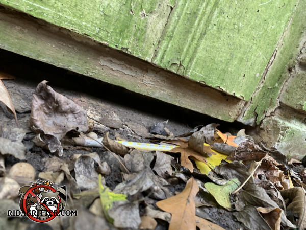 Roughly half inch gap between the bottom of a wooden crawl space door and the saddle needs to be closed to keep mice out of a house in Atlanta.