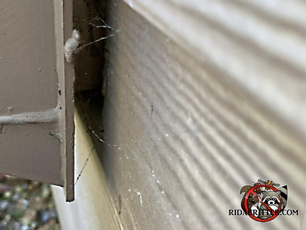 There is a gap of about half an inch between the flange of the clothes dryer vent and the siding that allowed mice into a house in Cumming Georgia.