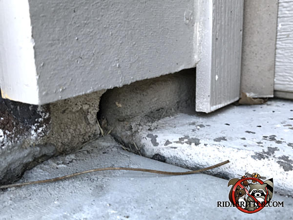 Eroded mortar in the block foundation of a house in Cumming Georgia allowed mice to get into the house
