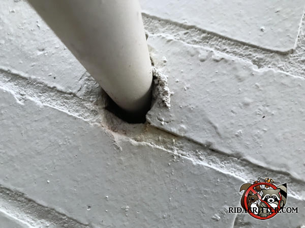 Gap around a pipe where it passes through a brick wall was how mice got into a house in Johns Creek Georgia