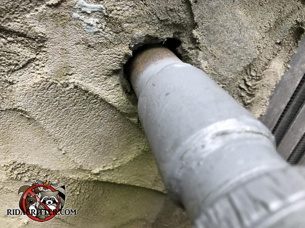 Gap around the gas pipe where it passes through the foundation allowed mice to get into a house in Johns Creek Georgia