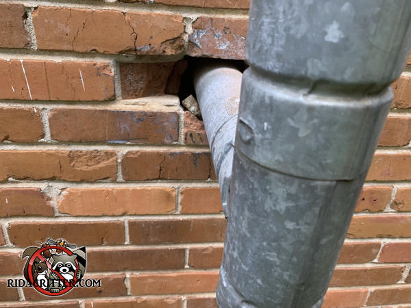 Gap around a gas pipe going through a hole in a brick wall several feet from the ground allowed mice into a house in Atlanta.