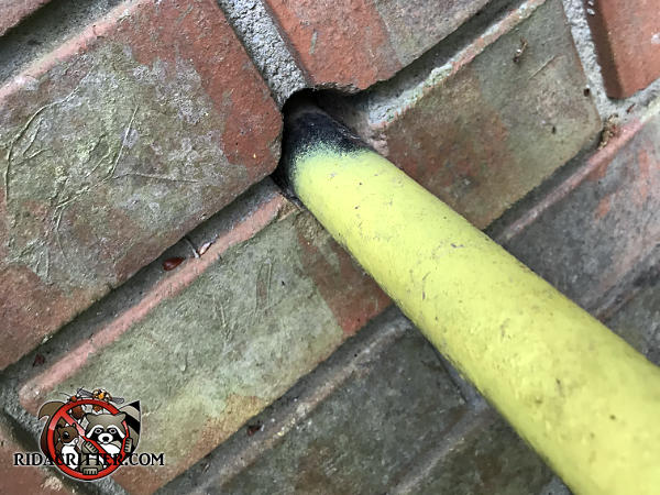 Gap around a yellow painted steel pipe where it passes through a brick wall allowed mice into a house in Griffin Georgia.