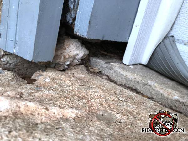 One inch gap between the wooden siding and the concrete allowed mice to get into a house in Riverdale Georgia