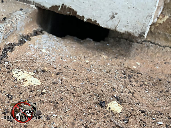 The concrete under the door frame has been eroded away by water creating a gap that allowed mice into a house in Roswell Georgia
