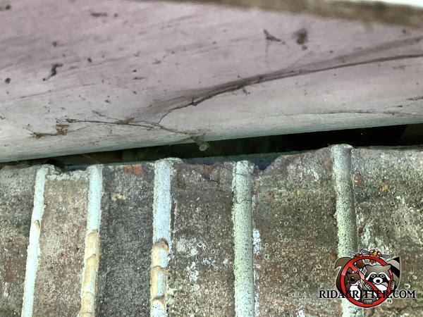 Irregular gap averaging about half an inch at the top of the bricks by the sill plate under a bay window allowed mice into a Columbus Georgia home.