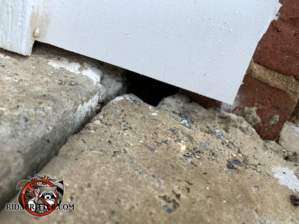 A half inch gap under the exterior door trim and a roughly one inch square gap in the pavement need to be sealed to keep mice out of a house in Smyrna Georgia