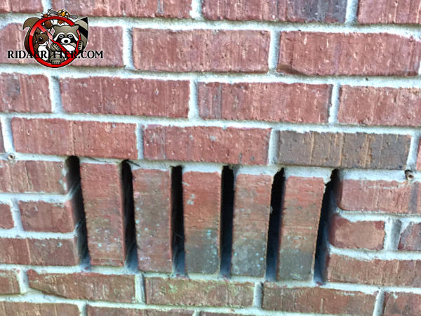 Gaps between five vertical bricks used as a crawl space vent need to be screened to keep mice out of a Newnan Georgia home.
