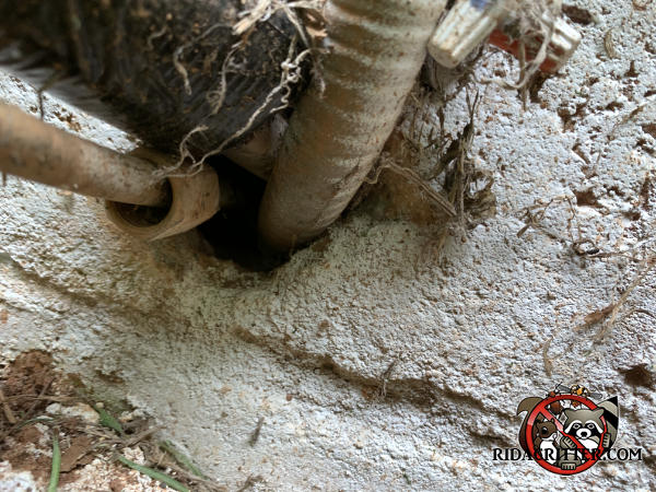 Nickel sized gap around pipes and wires where they pass through a brick wall needs to be sealed to keep mice out of a house in Atlanta.