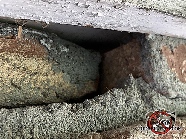 Displaced brick created a gap that mice used to get into a brick house in Atlanta