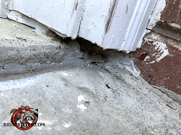 Mice got into a Duluth Georgia home through a gap between the bottom of the trim and the concrete pavement