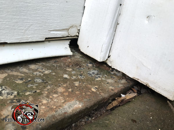 Mice chewed through the corner of the garage door weather seal to get into a house in Fayetteville Georgia