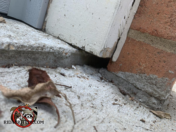 Half inch gap between the bottom of the wooden trim and the concrete pavement needs to be sealed to keep mice out of a house in Powder Springs Georgia.