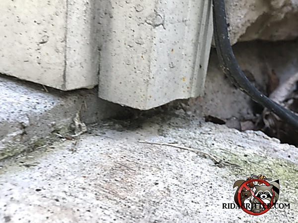 Gap between the door trim and the concrete that allowed mice to get into a house in Rydal Georgia