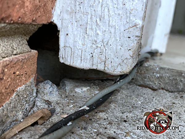 Half inch gap between the wooden door frame and the brick work of a house in Soddy Daisy Tennessee allowed mice into the house