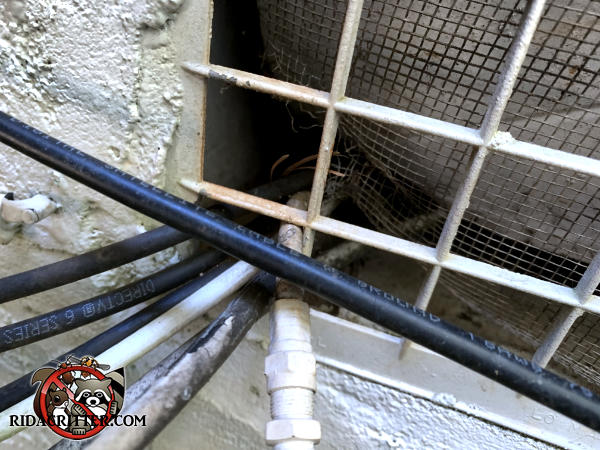 Seven cable TV wires were pushed past the metal screen behind a foundation vent which allowed mice to get into a house in Conyers Georgia.