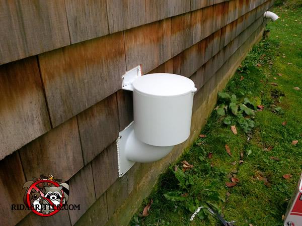 Mouse Proof Insulation : Mouse control alpharetta roswell columbus north georgia
