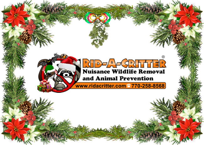 Christmas card featuring the Rid A Critter logo animals