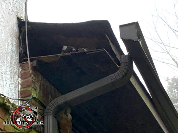 Raccoon tore the end of the soffit off a house in Riverdale Georgia to get into the attic