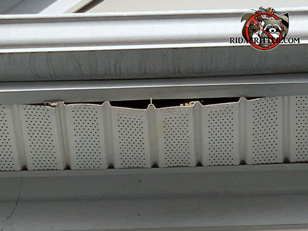 About a two foot length of soffit panel is sagging and partially detached from a house in Albany Georgia due to the weight of raccoons walking on top of it.