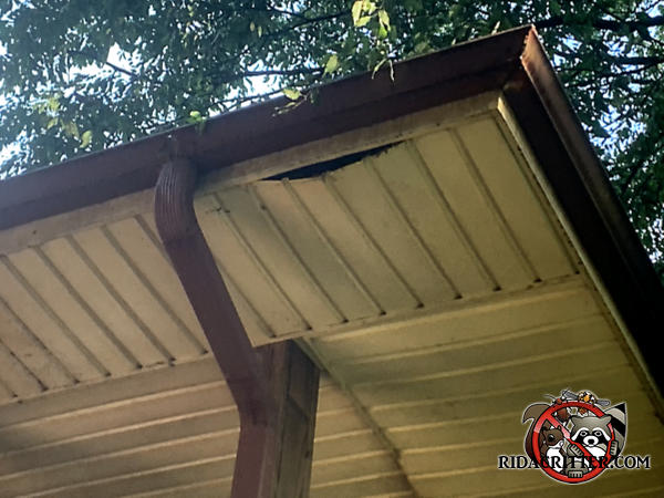 The soffit panel of a house in Atlanta is hanging down a few inches because it collapsed under the weight of raccoons running on top of it.