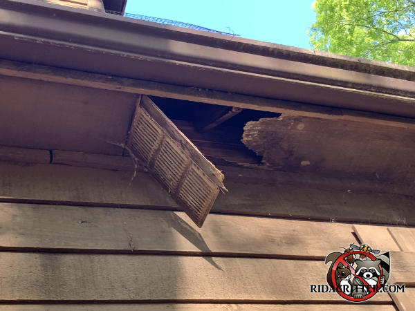 The soffit panel is broken and the vent cover is hanging down because of raccoons running inside the soffit
