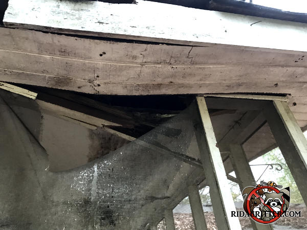 The soffit and the ceiling of the porch are rotten and buckling due to water damage that also made it easier for raccoons to get into a house in Lilburn Georgia.