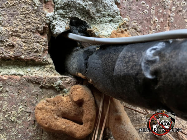 Both mortar and insulating foam used to seal a hole through a brick wall to keep rats out of a house in Atlanta fell out of the hole and failed