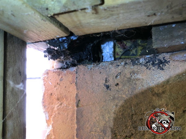 Handyman unsuccessfully attempted to use a tar like substance to fill in a gap in the sill plate under the deck of a house