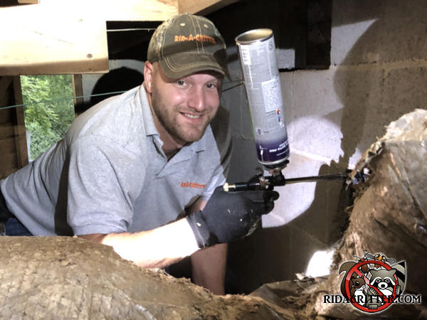 Smiling technician with sealant in his hand in the crawl space of a house sealing rats out