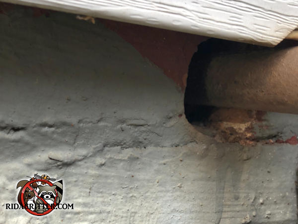 Gap under a pipe passing through the foundation of a house in Atlanta made it easy for rats to get into the basement