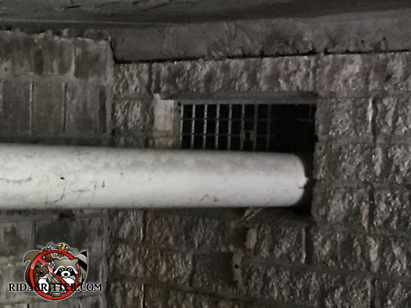 Four inch PVC pipe going through a foundation vent was used by rats to get into the basement of a house in Carrollton Georgia