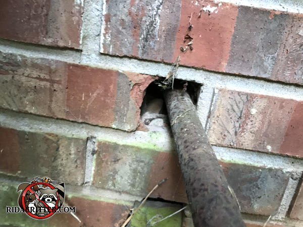 Mice got into a brick house in Good Hope Georgia because no one sealed around a pipe where it was passed through the brick wall