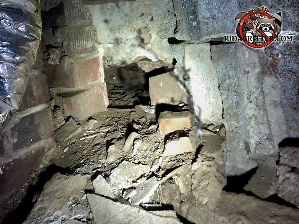 A large hole in the bottom of a deteriorating rubble foundation wall will be repaired as part of a Jasper Georgia Norway rat control job.