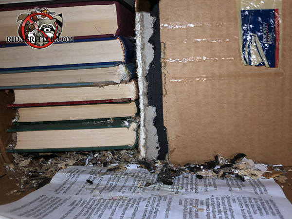 Rats gnawed at the spines and covers of books stores in the attic of a Birmingham Alabama home and damaged them with their urine and feces.
