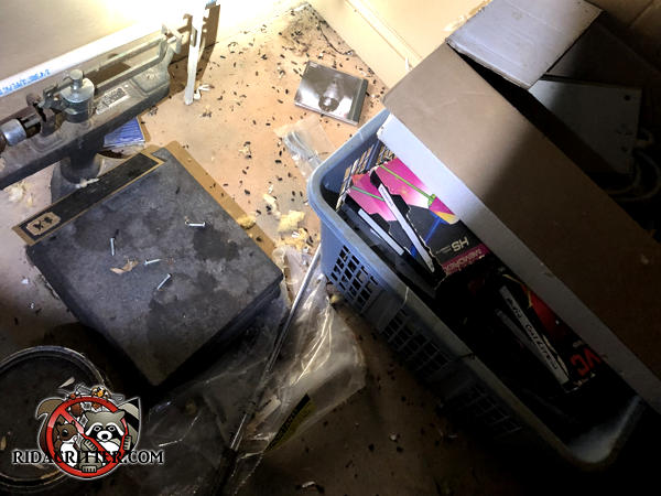 Rat droppings on the floor of a basement in Atlanta among various stored items including a scale and some books in a basket