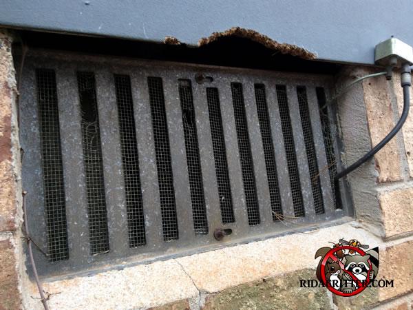 Animal Damage Repair Amp Animal Proofing Macon Georgia