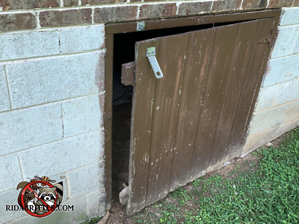 The wooden crawl space door is ajar and is missing a vertical slat on its hasp side which allowed Norway rats into the crawl space of a house in Atlanta