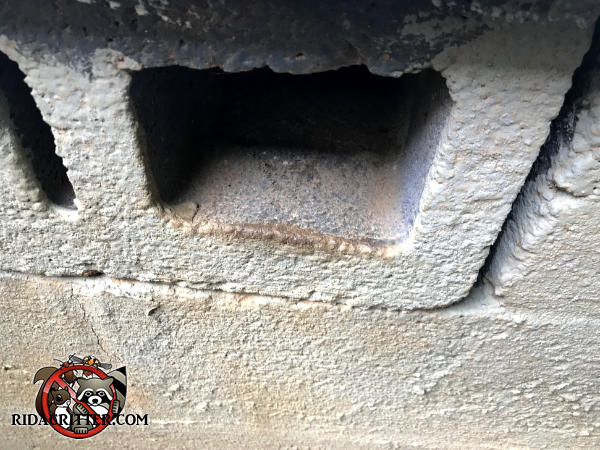 Stains from rat rub marks along the edge of a lightening hole of a cinder block are evidence of a rat problem in the crawl space of a house in Atlanta.