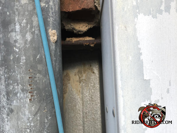 Gap in a wall between a vertical pipe and a piece of equipment allowed rats to get into a building in Douglasville Georgia