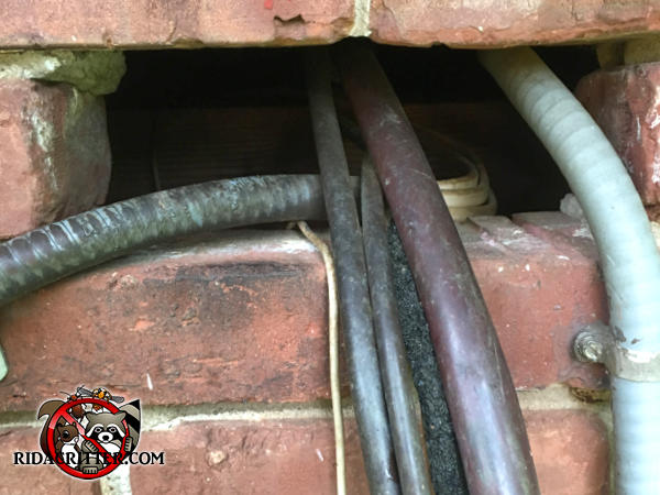 Rectangular gap in the bricks where pipes pass through allowed rats to get into a house in Dunwoody Georgia